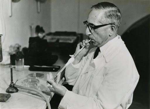 Giuseppe Brotzu: il padre delle cefalosporine