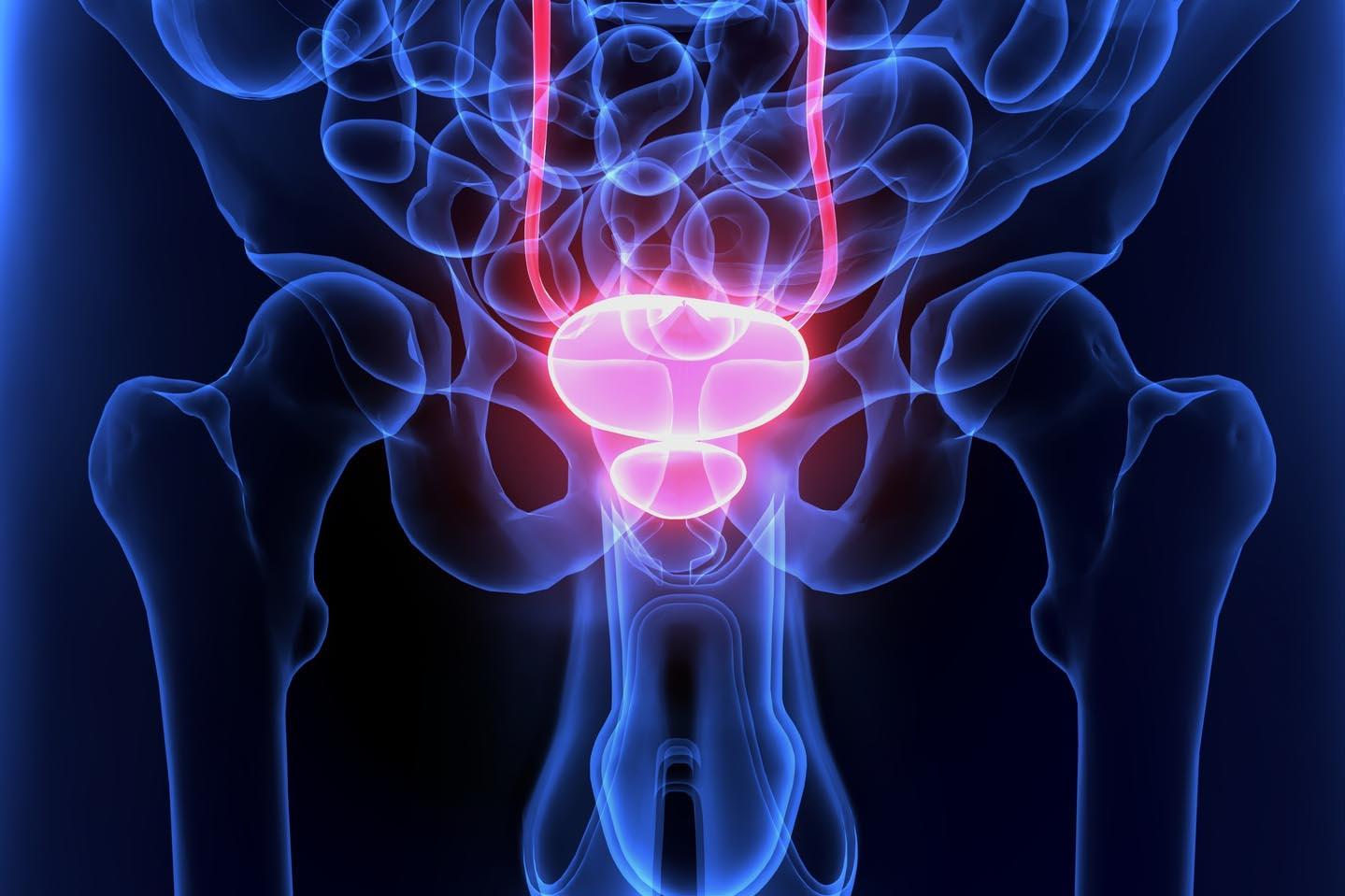 Microbiota e prostata