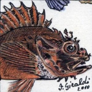 Francesco Giraldi