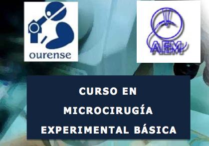 Curso en Microcirugía Experimental Básica 2017