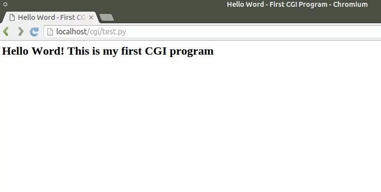 First CGI program