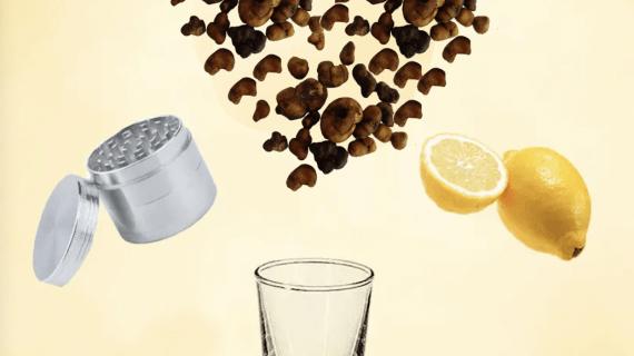 What Is Lemon Tek: Pros and Cons of Soaking Fresh Magic Truffles