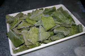 Frozen duckweed - fast food for fish.