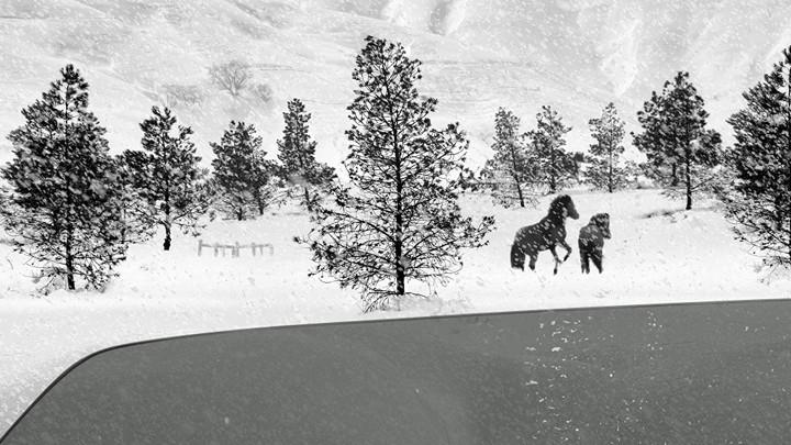 Estrenos: crítica de «24 Frames», de Abbas Kiarostami