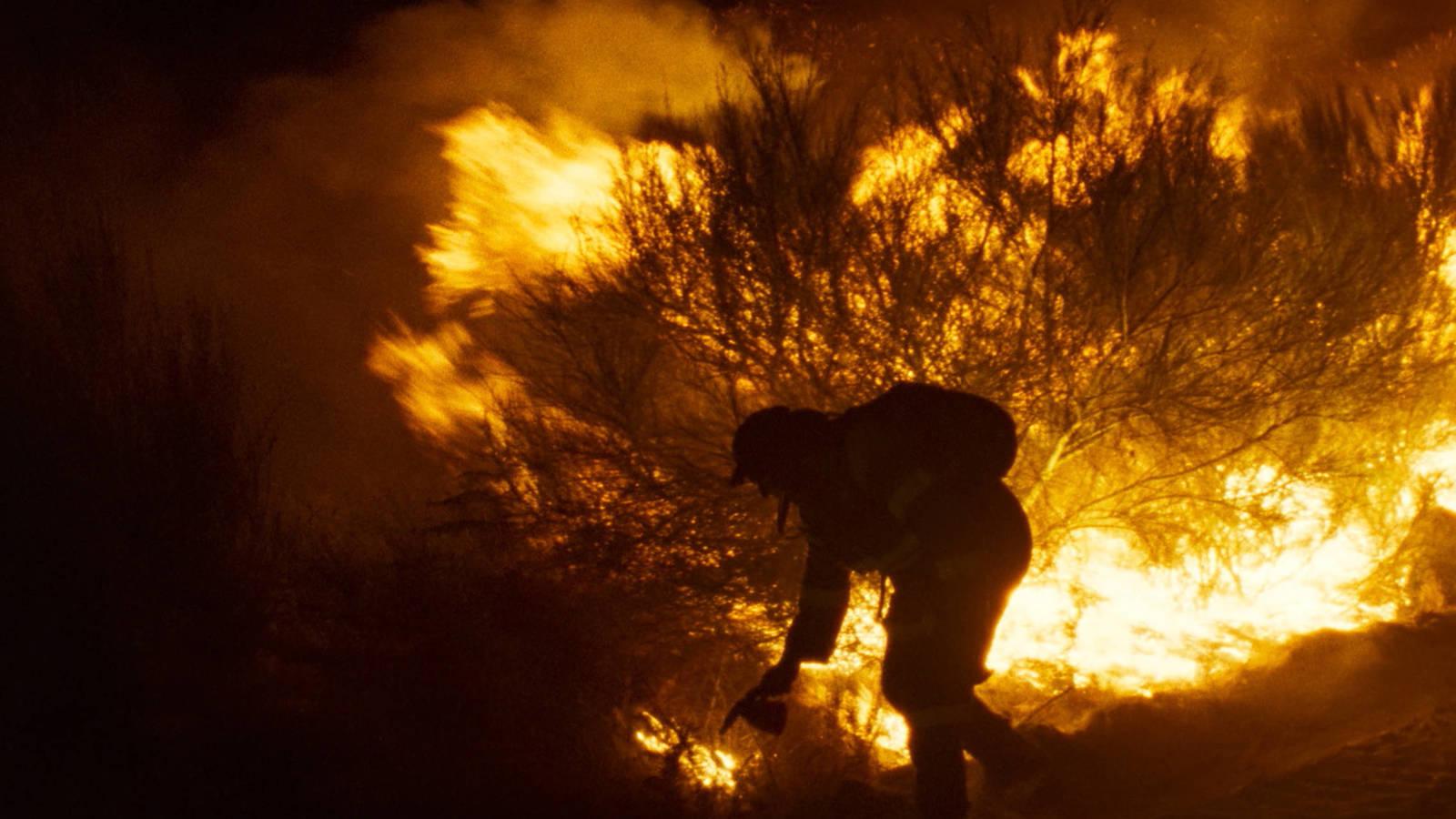 """Cannes 2019: crítica de """"O que arde"""", de Oliver Laxe (Un Certain Regard)"""