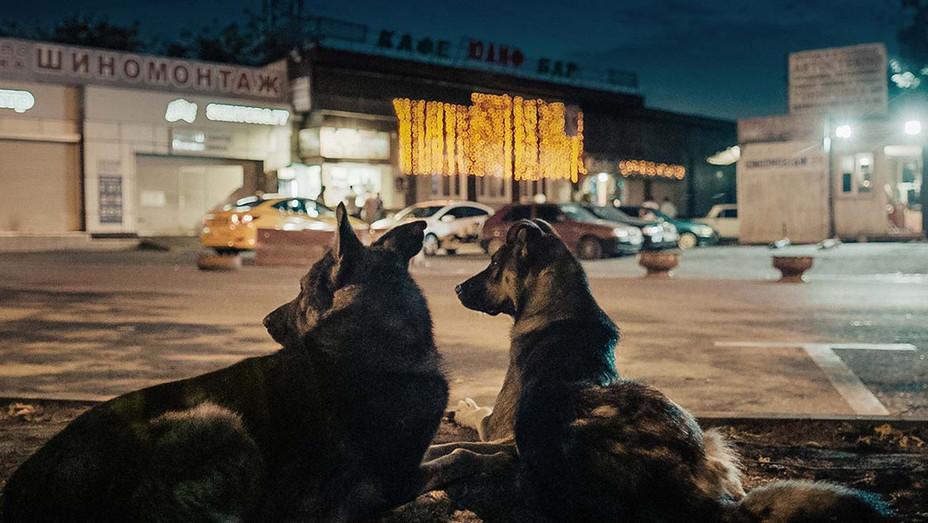 Estrenos online: crítica de «Space Dogs», de Elsa Kremser y Levin Peter (Mubi)