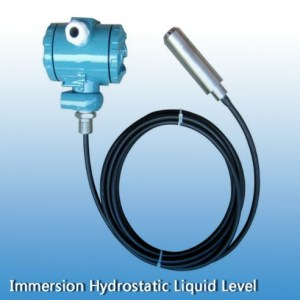 Immersion Hydrostatic Liquid Level