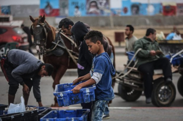 GPalestinian children work under difficult conditions due to Israeli embargo over Gaza during the World children's day, on 20 November 2016 in Gaza City, Gaza. [Ali Jadallah - Anadolu Agency]