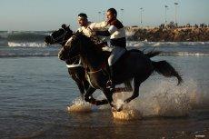 GAZA CITY, GAZA- Stop horsing around