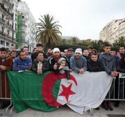 Algerian football fans cheer on their team