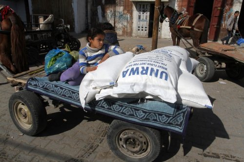 A Palestinian girl leans on sacks of flours on back of a horse-drawn carraige during a food aid distribution by UNRWA in Rafah, Gaza on January 22, 2017 [Abed Rahim Khatib / Anadolu Agency]