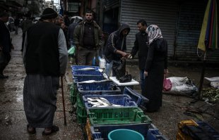 GAZA CITY, GAZA - FEBRUARY 13: Palestinian fishermen sale fish at a fish market in Al-Shati Camp after 11 tons fish were brought to Gaza following the Rafah Border Gate temporarily reopened by Egyptian authorities, in Gaza City, Gaza on February 13, 2017. ( Ali Jadallah - Anadolu Agency )