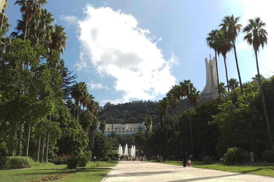 Image of the many plants found in Botanical Garden of El Hamma in Algiers, Algeria