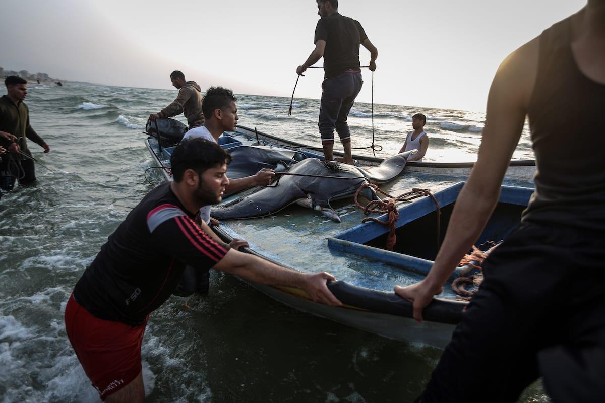 Palestinian fishermen in Gaza City, Gaza [Ali Jadallah/Anadolu Agency]