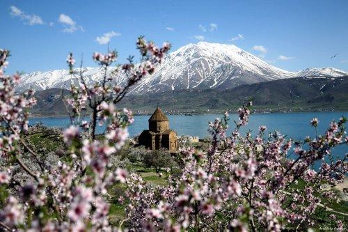 VAN, TURKEY - Spring arrives at historical Akdamar Island!