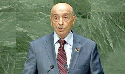 Image of House President, Aguilla Saleh Issa [Twitter]