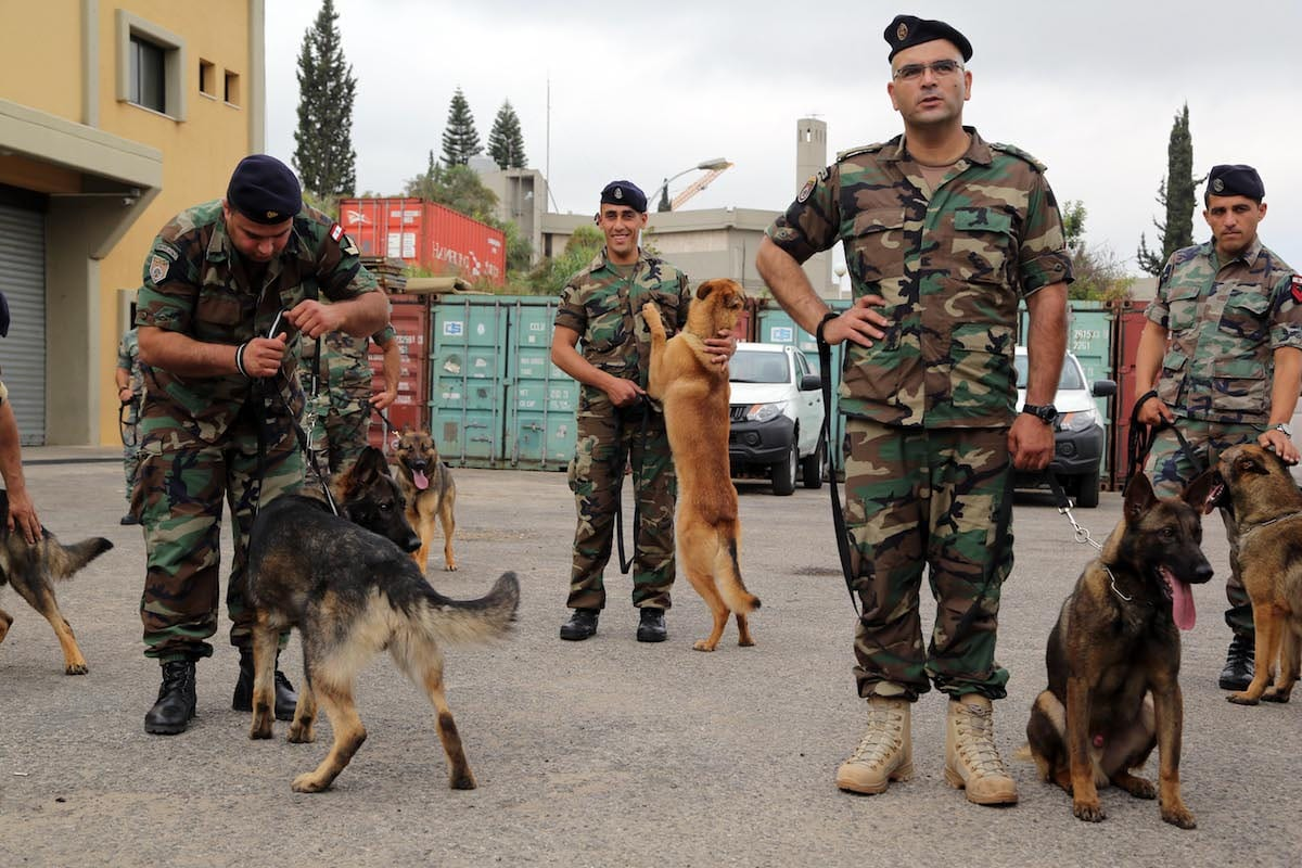 Lebanese army carries out fresh raids on refugee camps, arrests 36
