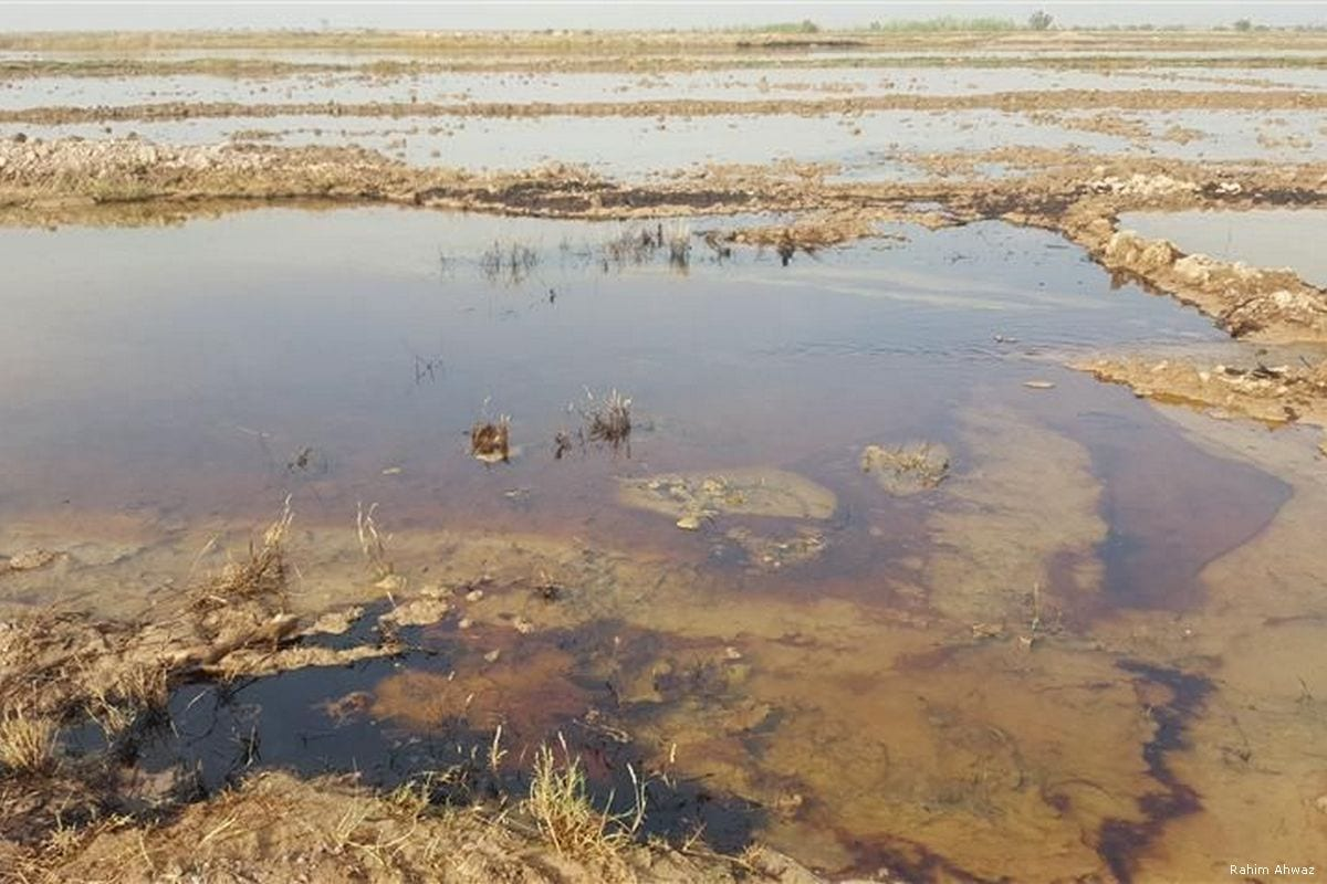 A polluted river is seen in the Ahwazi region of Iran [Rahim Ahwaz ]