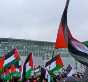 Official Arab support for Palestine falls while support in the West grows