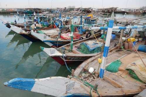 Dhows in Doha's harbour, Qatar. [Vincent van Zeijst/Wikimedia]