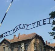 Israeli man fined $1,500 for urinating at Auschwitz memorial
