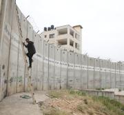 Even animals are divided by Israel's Wall and occupation threats to the local environment