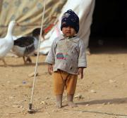 UNICEF: 80% of Iraq's children face violence