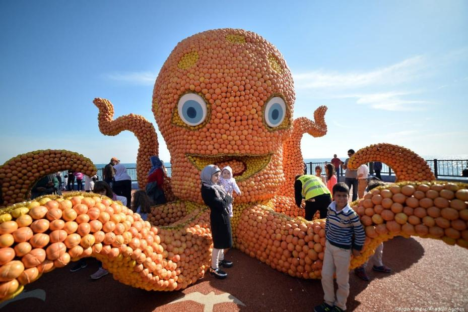 It was the 6th Annual Citrus Fest, and this giant octopus made of fruit came out to play! Turkey 17 November 2018 [Sezgin Pancar/Anadolu Agency]