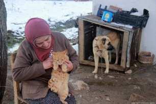 Farmer Fatima Chiri looks after the gang of cats in Turkey, 19 November 2018 [Sidar Can Eren/Anadolu Agency]