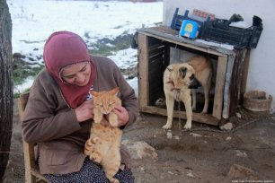 Farmer Fatima Chiri looks after the gang of cats in Turkey, 19 November 2018 [Sidar Can Eren/Anadolu Agency]