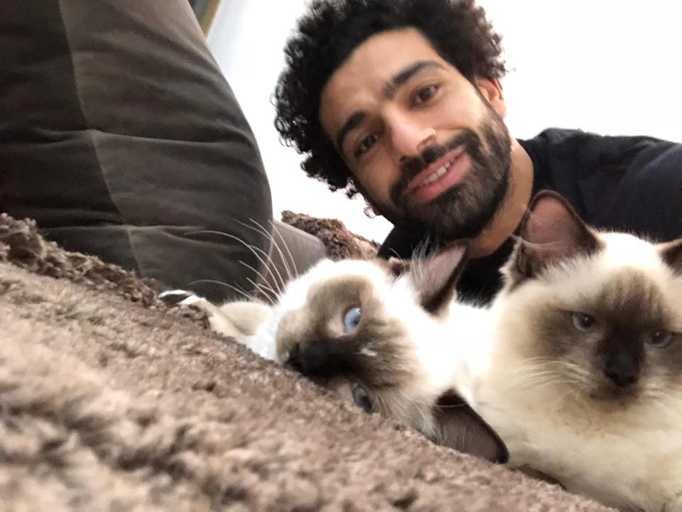 Egyptian football player Mohammed Salah posted a selfie of himself with his two Siamese cats on Facebook with the caption: 'Dogs and cats will not be exported anywhere. This will not happen and cannot happen' [Facebook]