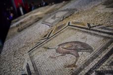"""Missing pieces of the famed """"Gypsy girl mosaic"""" are on display during its temporary public exhibit in its original home at Zeugma Mosaic Museum in Turkey's southeastern Gaziantep province on December 08, 2018 [Kerem Kocalar / Anadolu Agency]"""
