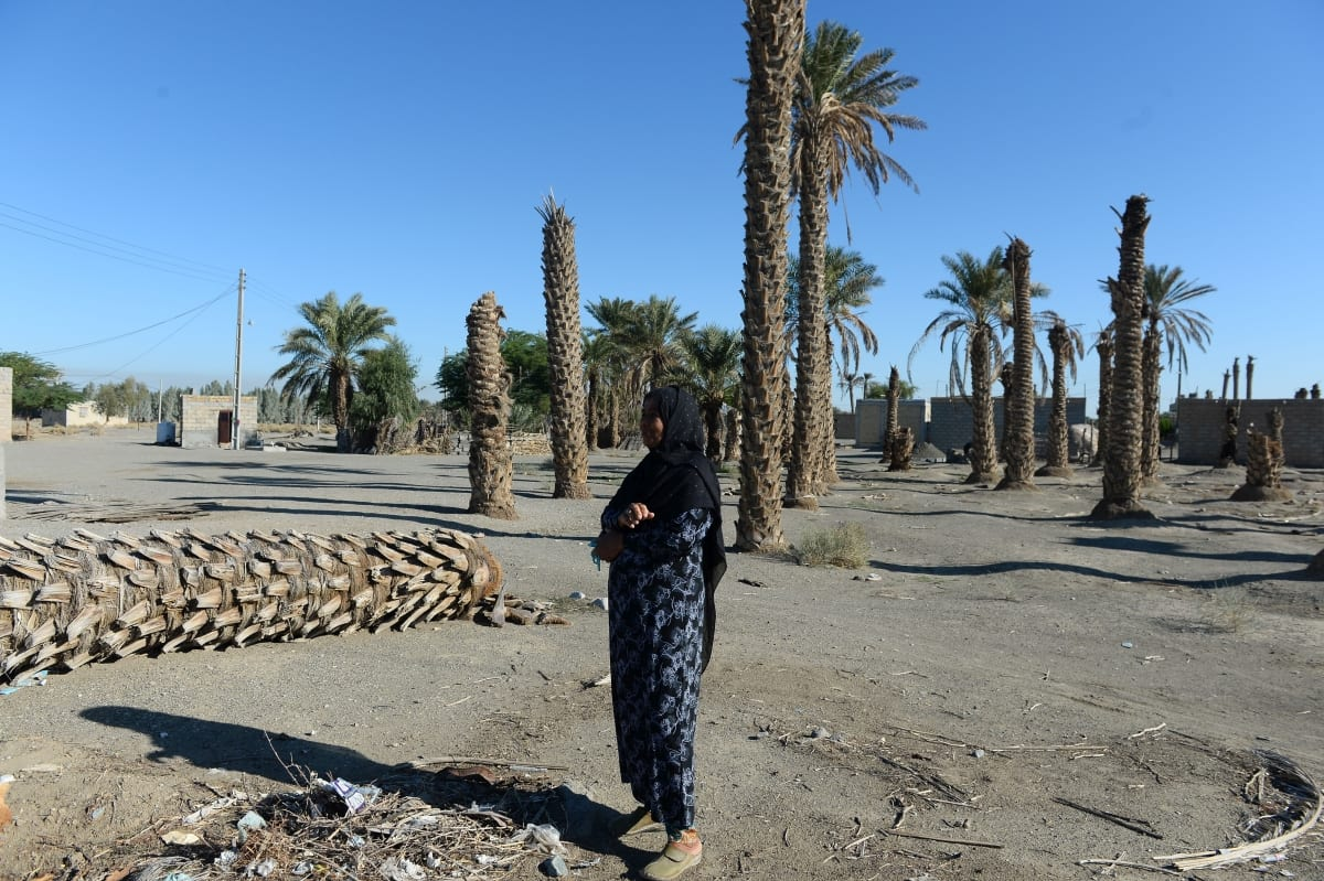 A woman stands near date palm trees as one of the country's major sources of income faces against drought in Kerman, Iran on December 15, 2018. ( Fatemeh Bahrami - Anadolu Agency )