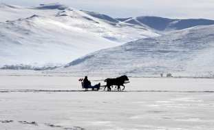 """A horse-drawn sleigh rides on the frozen """"Lake Cildir"""" which is almost totally covered by ice in winter in Aradahan province of Turkey on 11 January 2019. [Günay Nuh/Anadolu Agency]"""