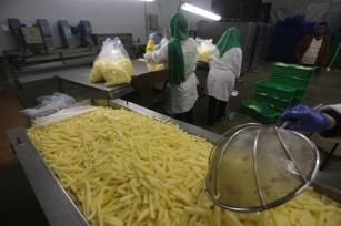 Potatoes factories in Gaza, entirely run by women [Mohammed Asad/Middle East Monitor]