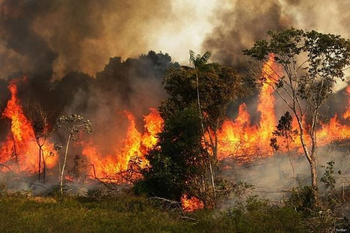 Fire raging on in the Amazon rainforest