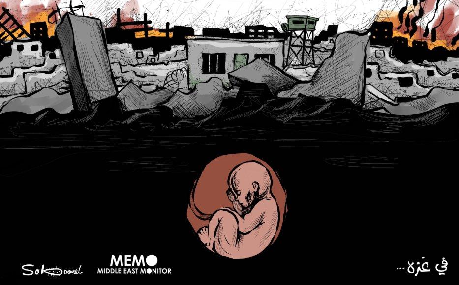 Still hope in Gaza despite destruction - Cartoon [Sabaaneh/MiddleEastMonitor]