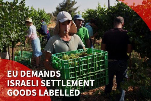 Thumbnail - European court demands labelling of Israeli settlement goods