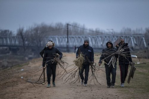Asylum seekers, including Syrians, Afghans, Iranians and Uzbeks, carry branches and woods to use them for warming-up as they continue to wait near Tundzha river in Turkey's Edirne to enter Greece on 5 March 2020. ([Arif Hüdaverdi Yaman - Anadolu Agency]