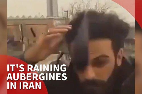 Thumbnail - It's raining aubergines in Iran