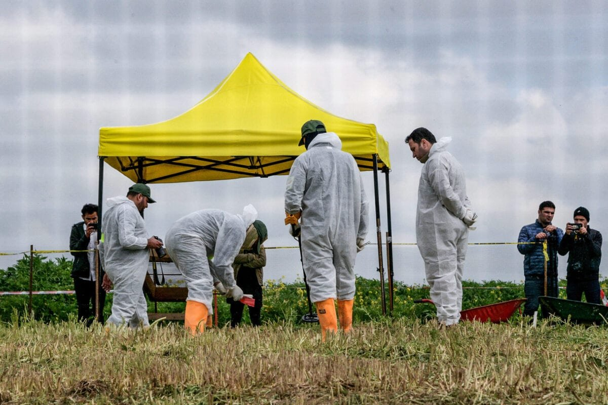 Forensic workers inspect a zone during the exhumation of a mass-grave of hundreds of Yazidis killed by Daesh militants in the northern Iraqi village of Kojo in Sinjar district on March 15, 2019. [ZAID AL-OBEIDI/AFP via Getty Images]