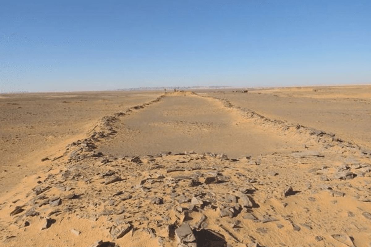 """Hundreds of the rectangular-shaped stones, now referred to as """"mustatils"""" in Saudi Arabia [The Holocene/Twitter]"""