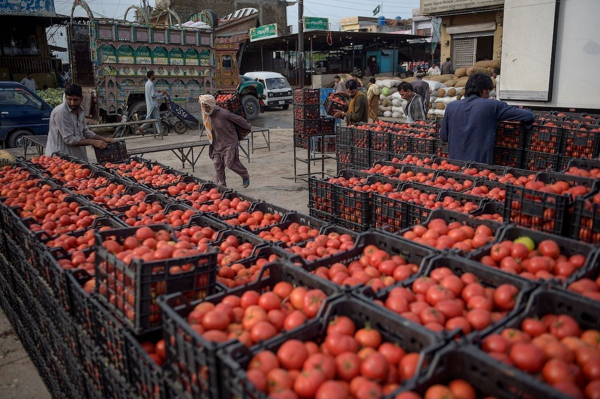 A porter (C) carries baskets tomatoes coming from Iran at a vegetable market on the outskirts of Islamabad on 19 August 2020. [FAROOQ NAEEM/AFP via Getty Images]