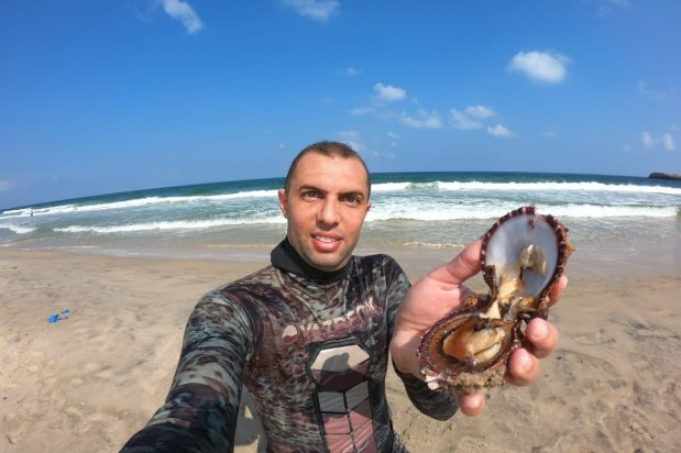 Palestinian photographer Mohammed Asad explores the sea off the Gaza coast and have harvested oysters