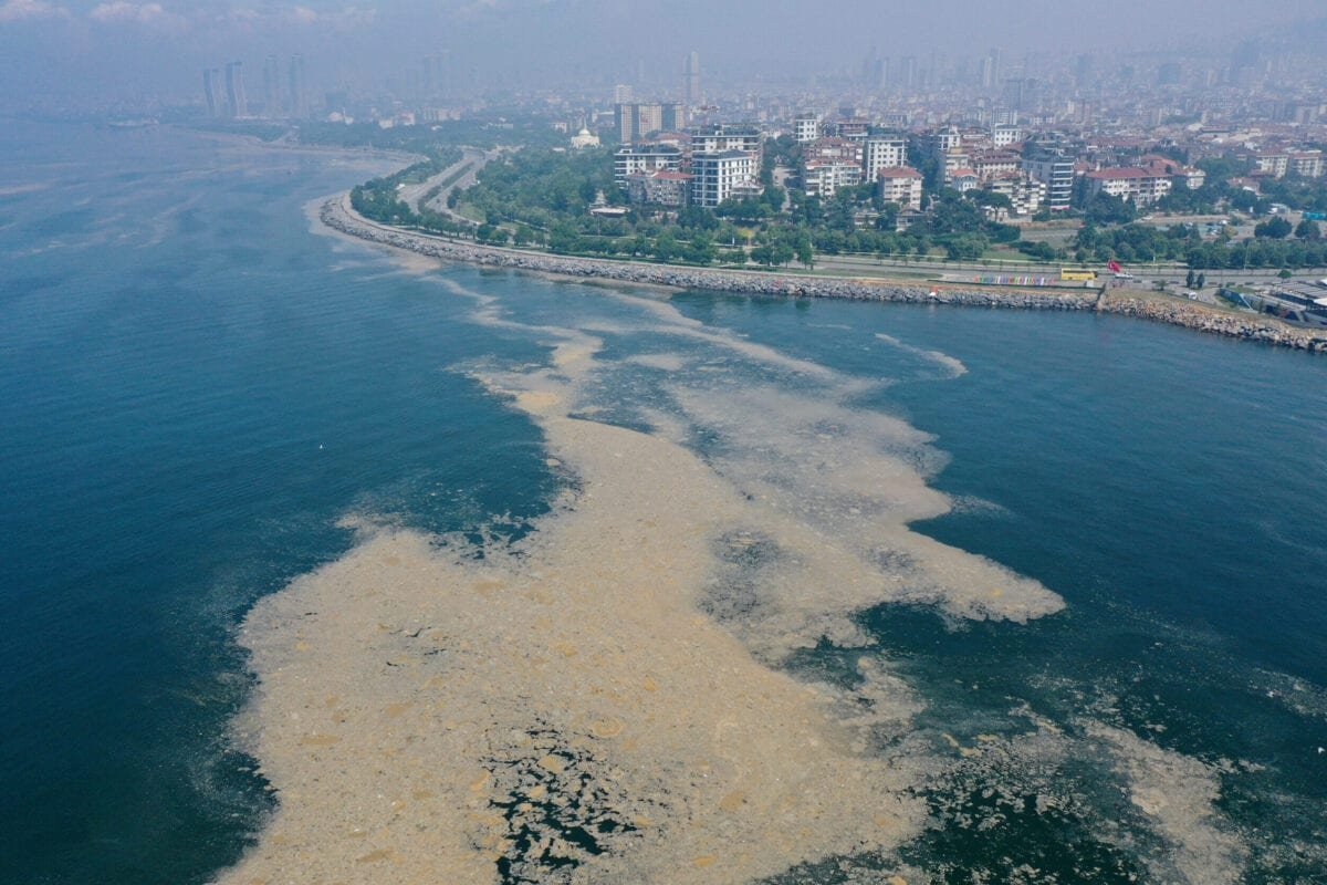 A drone photo shows an aerial view of mucilage (sea snot) at the Pendik shore in Istanbul, Turkey on June 20, 2021 [İslam Yakut/Anadolu Agency]