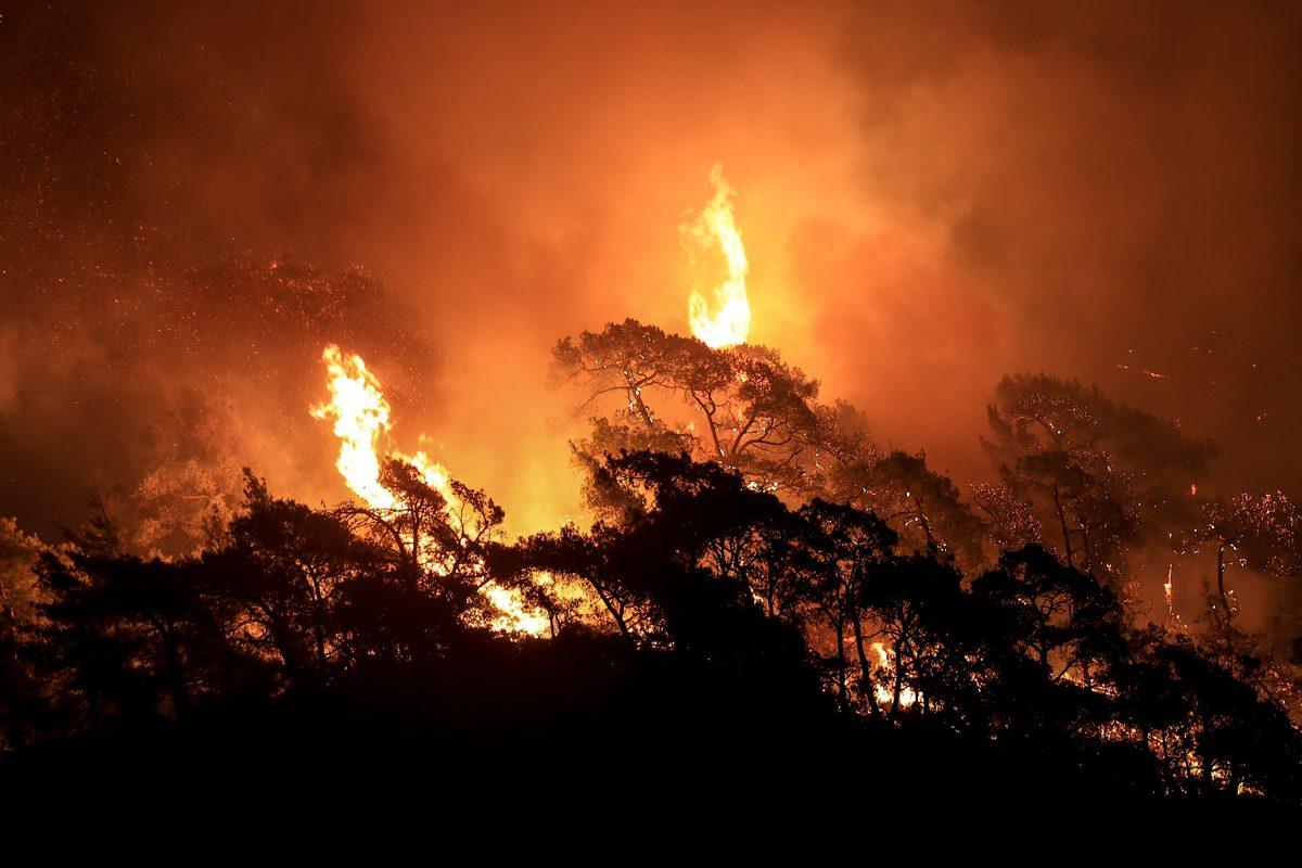 Smoke rises as fight against forest fires broke out in Turkey, 1 August 2021 [Mahmut Serdar Alakuş/Anadolu Agency]