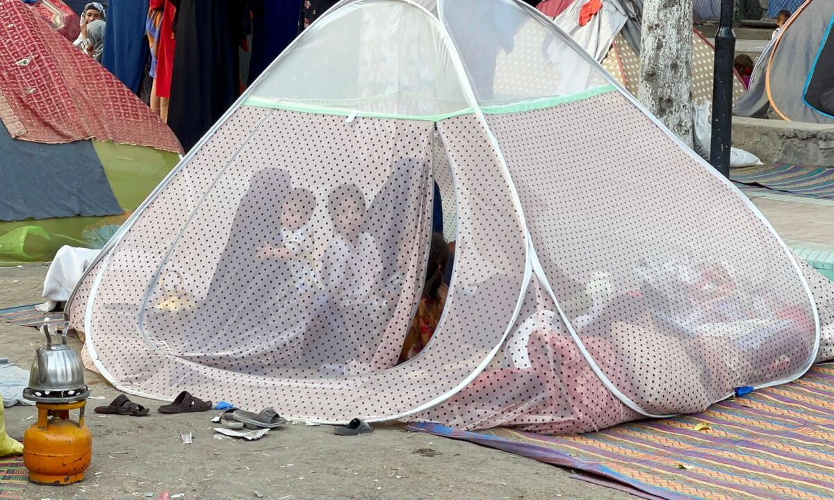 Afghan families set up tents at a park in Kabul, Afghanistan on 29 August 2021 [Haroon Sabawoon/Anadolu Agency]