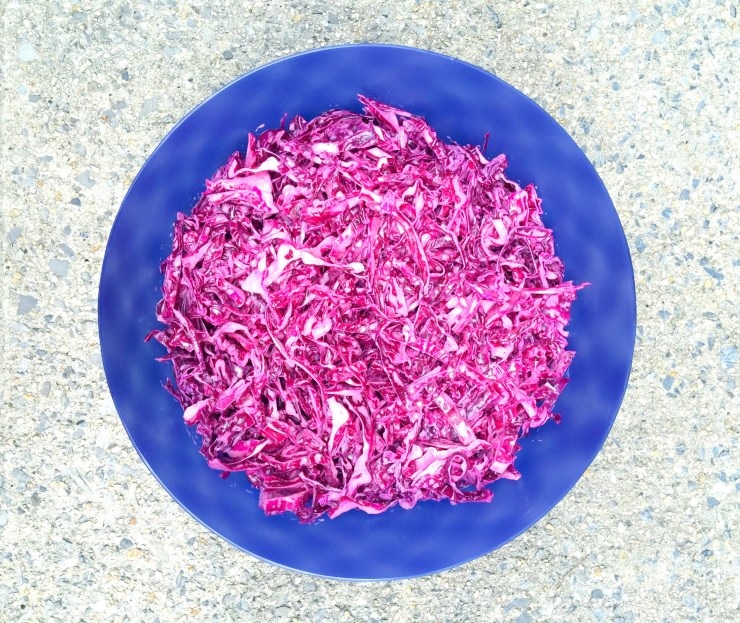 Red_Cabbage_Salad-MIDEASTPALEO