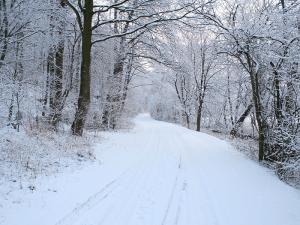 Winter an den Almehängen in Wewelsburg und Ahden