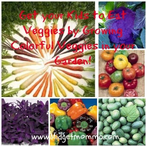 Veggies fun with color full veggies in your garden